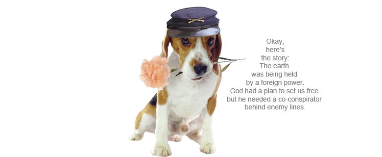 Beagle_Co_Conspirator