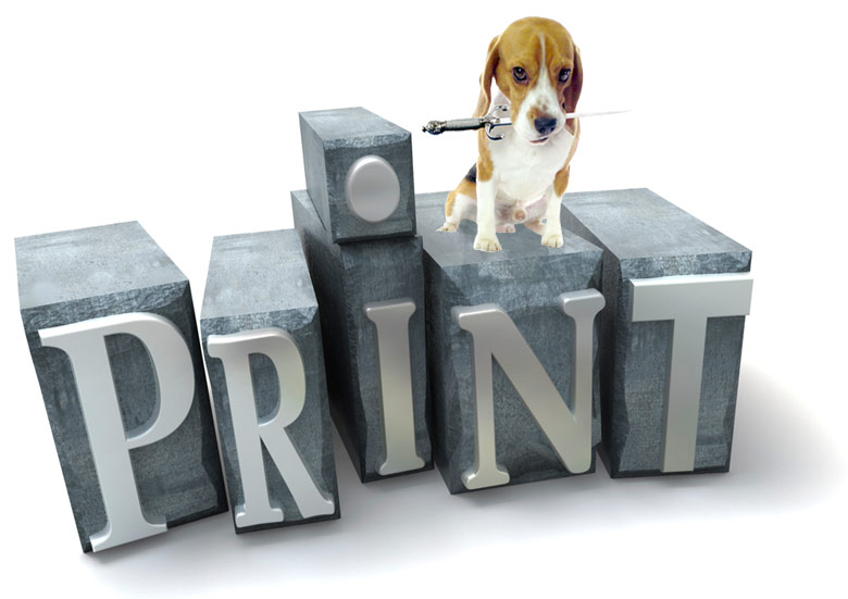 Beagle_Print_780